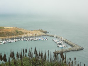 A view of Sausilito